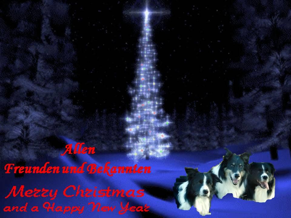 Weihnachten2009.1
