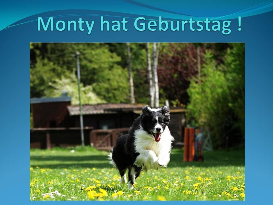 Monty hat Geburtstag !